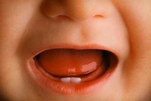 Черговість прорізування зубів